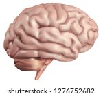 anatomical human brain  mesh... | Shutterstock .eps vector #1276752682