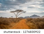 African View Of The Savannah In ...