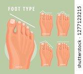 foot type vector detailed... | Shutterstock .eps vector #1277123215