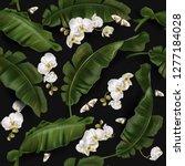 vector tropical seamless... | Shutterstock .eps vector #1277184028