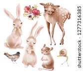set of cute forest  woodland... | Shutterstock . vector #1277316385