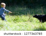 boy and pet dog playing with... | Shutterstock . vector #1277363785
