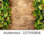 fresh mint leafs on wooden... | Shutterstock . vector #1277553838