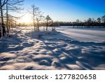 frost and ice crystal covered... | Shutterstock . vector #1277820658