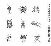 bug illustration   hand drawn...   Shutterstock .eps vector #1278233122