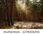 dreamy landscape with winter... | Shutterstock . vector #1278326242