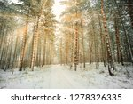 road in winter forest and... | Shutterstock . vector #1278326335