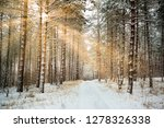 road in winter forest and... | Shutterstock . vector #1278326338
