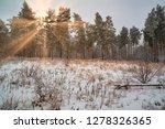 dreamy landscape with winter... | Shutterstock . vector #1278326365