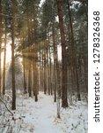 dreamy landscape with winter... | Shutterstock . vector #1278326368