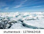 canada  nunavut territory ... | Shutterstock . vector #1278462418