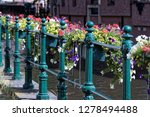 pots with flowers in bloom on a ... | Shutterstock . vector #1278494488