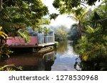 bahamas  freeport  garden of... | Shutterstock . vector #1278530968