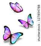 Stock photo three color butterflies isolated on white 127854788