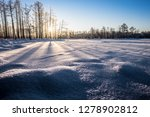 frost and ice crystal covered... | Shutterstock . vector #1278902812
