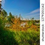 sunny summer morning outside... | Shutterstock . vector #1279201162