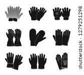 isolated object of glove and...   Shutterstock . vector #1279251298