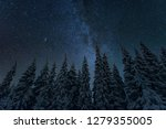 Starry Night Sky And Trees