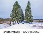 porkhov  russia   december 23 ...   Shutterstock . vector #1279482052