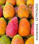 colorful fruit of the prickly...   Shutterstock . vector #1279576252