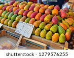 colorful fruit of the prickly...   Shutterstock . vector #1279576255
