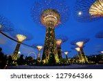 Singapore   January 23  Night...