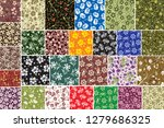 colorful flower background wall ... | Shutterstock . vector #1279686325