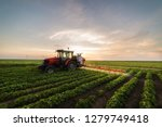 Tractor Spraying A Field Of...