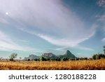 view of natural grasslands ... | Shutterstock . vector #1280188228