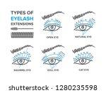 types of eyelash extensions....   Shutterstock .eps vector #1280235598