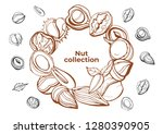 isolated vector nut on a white... | Shutterstock .eps vector #1280390905