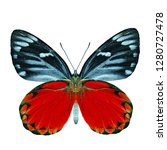 Stock photo beautiful fancy red butterfly isolated on white background redspot jezebel delias descombesi 1280727478