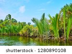 discover mangrove forests on... | Shutterstock . vector #1280890108