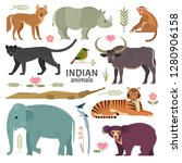 indian animals. vector... | Shutterstock .eps vector #1280906158