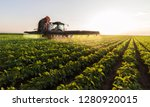 tractor spraying pesticides at  ... | Shutterstock . vector #1280920015