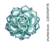 little blue succulent hand... | Shutterstock . vector #1281046978