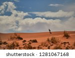 picturesque namib desert... | Shutterstock . vector #1281067168