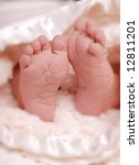 a close up of a baby's feet   Shutterstock . vector #12811201