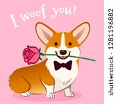Stock vector corgi dog with rose flower in mouth valentine s day card vector cartoon cute sitting corgi puppy 1281196882