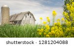 limited depth of field photo... | Shutterstock . vector #1281204088