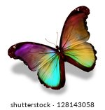 Stock photo dark green gold violet butterfly morpho isolated on white 128143058