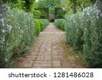 scenic view of a path way... | Shutterstock . vector #1281486028