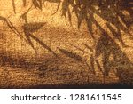 close up image of tree texture... | Shutterstock . vector #1281611545