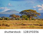 Savanna Landscape And Its Flor...