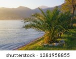 beautiful mediterranean... | Shutterstock . vector #1281958855