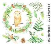 watercolor cute owl and forest... | Shutterstock . vector #1281969655