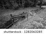 Overgrown World War One Trench...