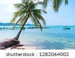 starfish beach  phu quoc ... | Shutterstock . vector #1282064002
