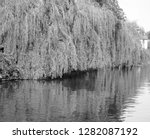 weeping willow on the banks of... | Shutterstock . vector #1282087192