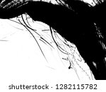 abstract ink background.black... | Shutterstock . vector #1282115782